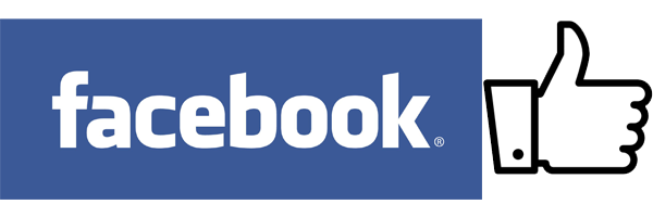 Facebook Like Icon 1